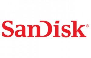 D-(28_14_SanDisk)1