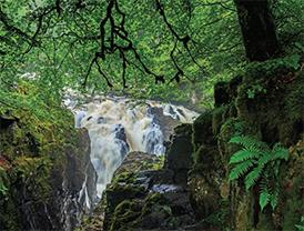 L(12_2015_Scotland-Spotlight-on-Nature)2