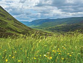 L(12_2015_Scotland-Spotlight-on-Nature)3