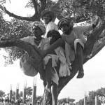Pushkar by Sudhir Kasliwal