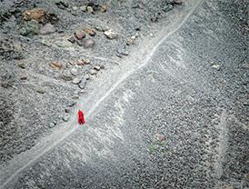 A lone monk